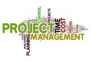 Brenda Violette, Project Manager